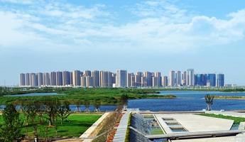 杭州湾新区环境整治提升显成效